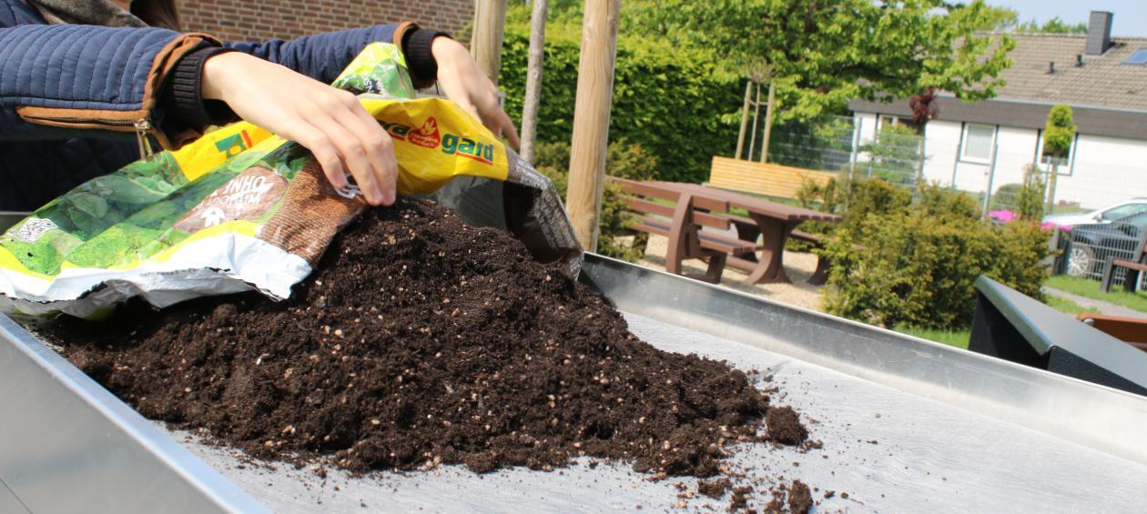Erde einfüllen auf Mülltonnenbox-Pflanzdach - RESORTI