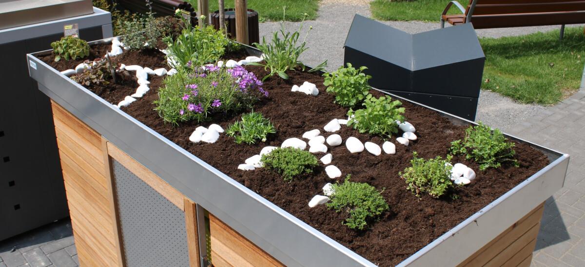 Pflanzen auf Mülltonnendach gegen Ungeziefer Resorti Mülltonnenboxen Blog